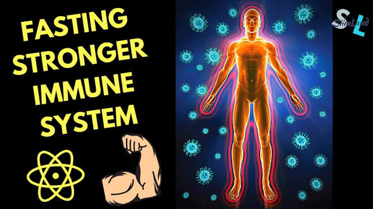 Strengthen your immune system by fasting for 24 hours every week